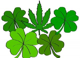 is weed legal in Ireland
