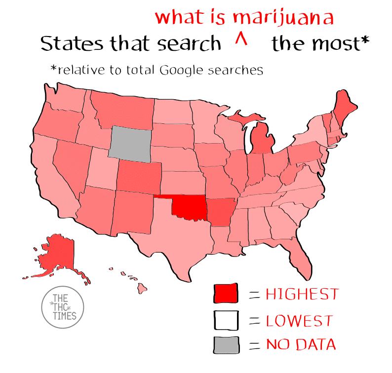 what is marijuana - Google trends